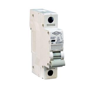 کلید منیاتوری 6000 تکفاز 2 آمپر الکترو کاوه